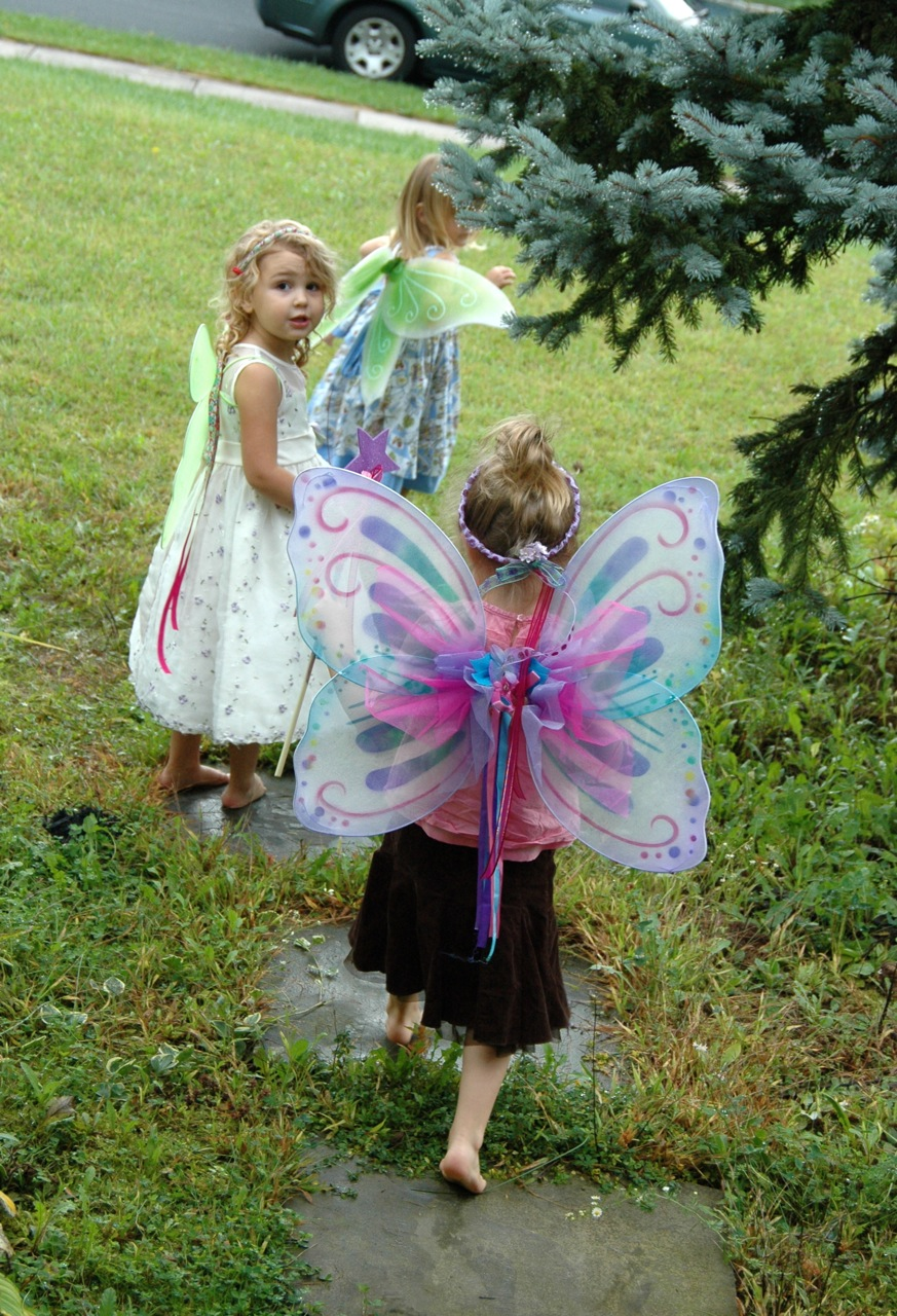 Fairy girls