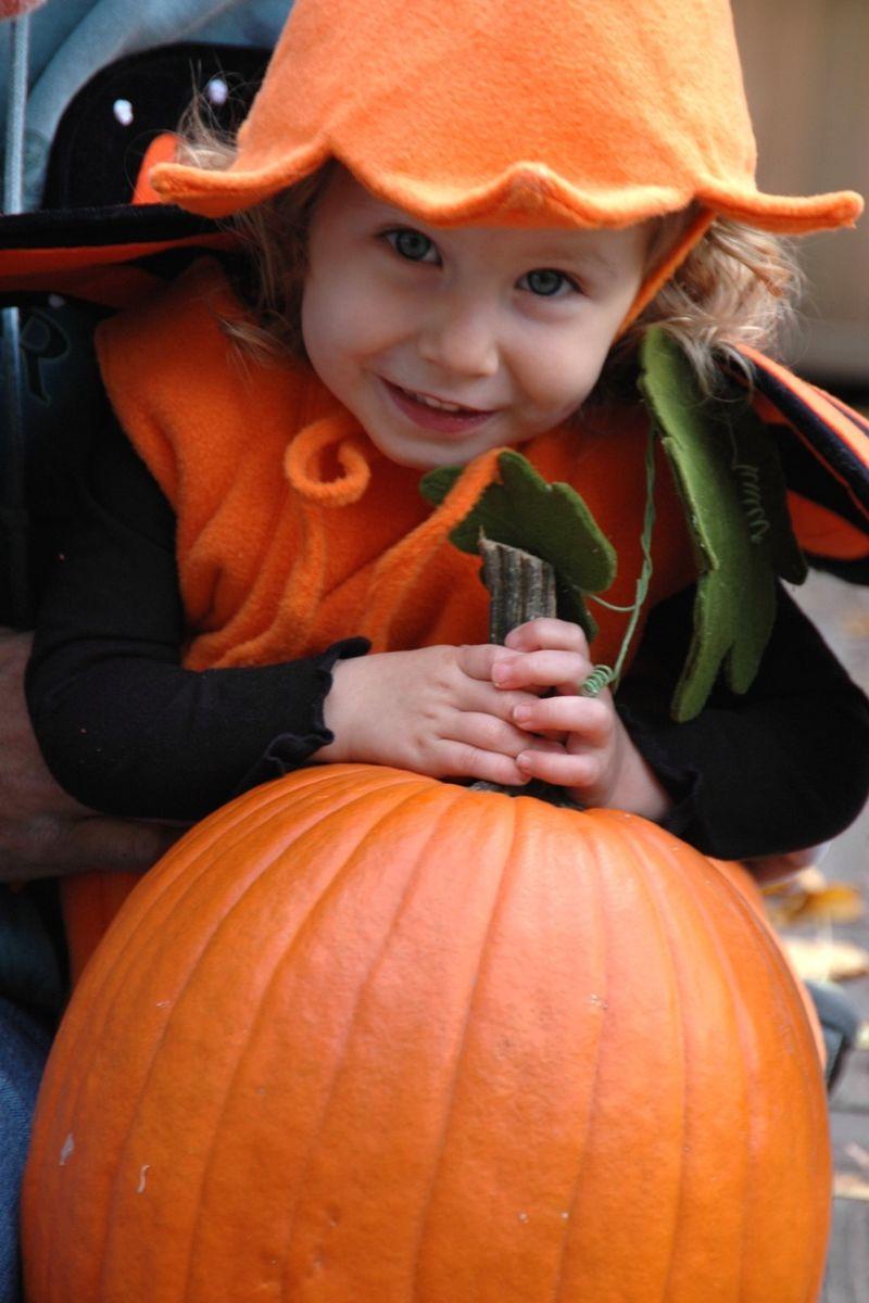 Pumpkin costume 3