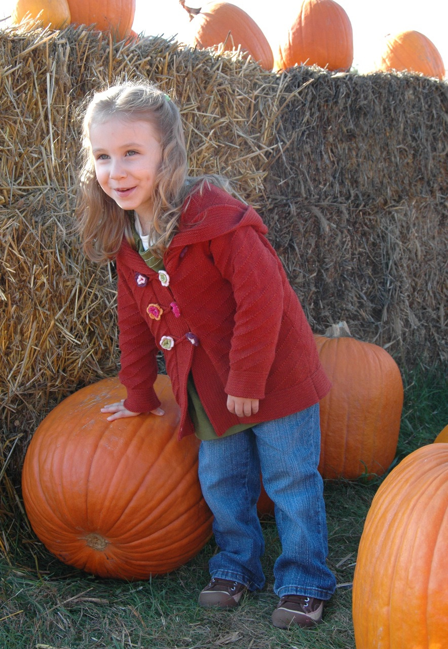 Pumpkin patch 1