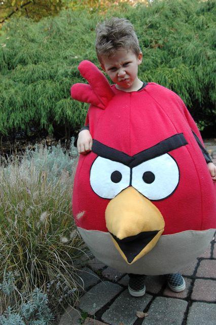 Angry bird 6
